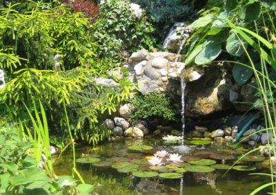 vrt-ribnik
